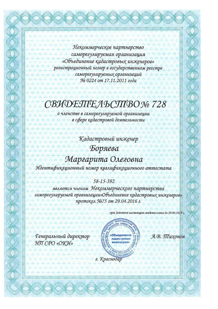 Свидетельство Боряева М.О