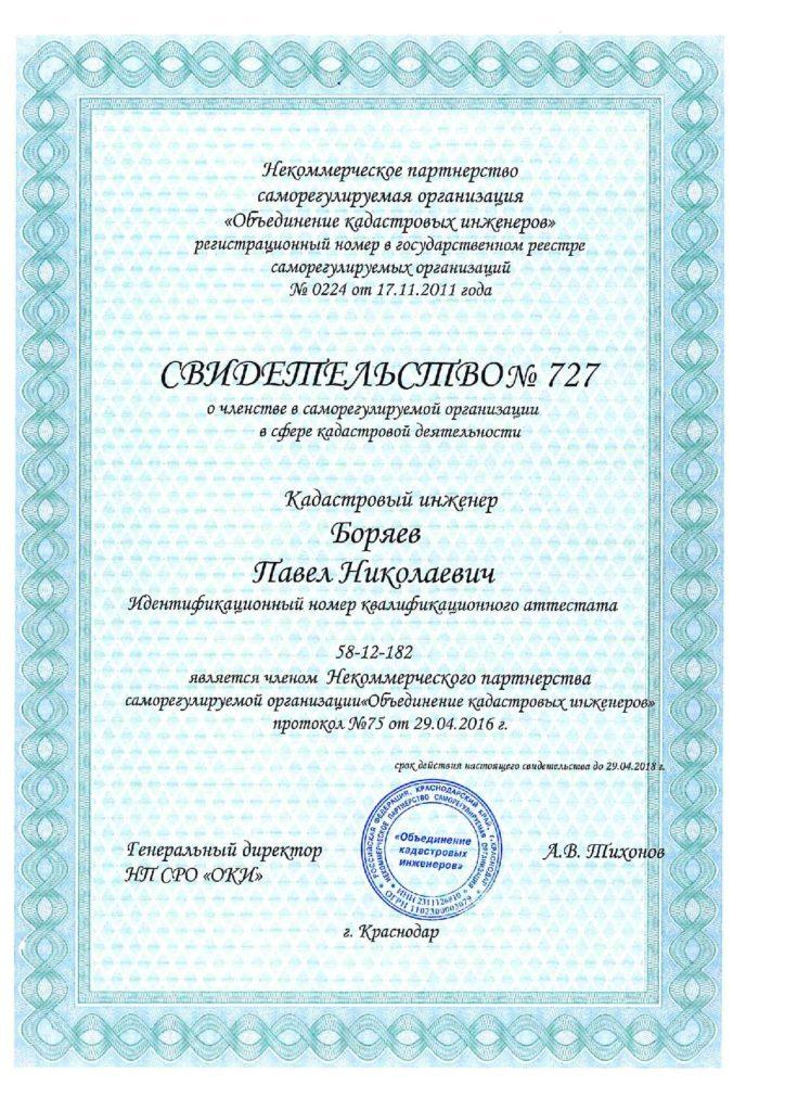Свидетельство Боряев П.Н.